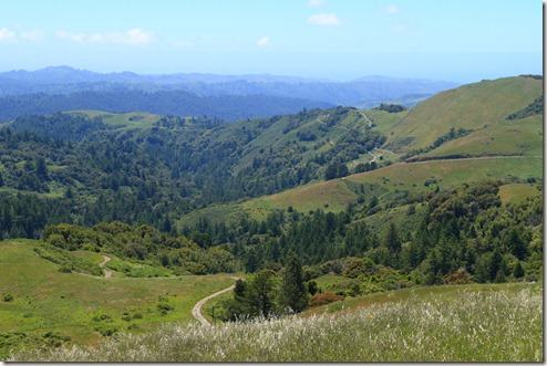Russian Ridge View